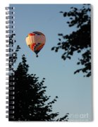 Balloon-7081 Spiral Notebook
