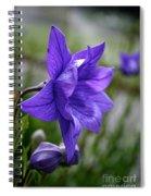 Balloon Flower Profile Spiral Notebook
