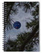 Balloon In The Pines Spiral Notebook