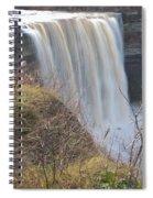 Balls Falls 9931c Spiral Notebook