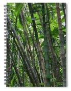 Bamboo 2 Spiral Notebook
