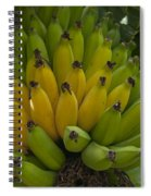 Banana Spiral Notebook