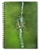 Banana Spider With Web Spiral Notebook