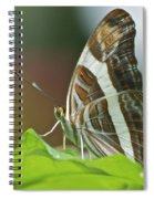 Band-celled Sister 2921 Spiral Notebook