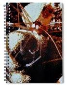 Barbershop Shrimp Spiral Notebook