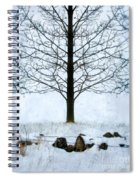 Bare Tree In Winter Spiral Notebook