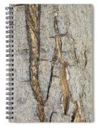 Barking Up Stream Spiral Notebook
