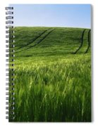Barley, Co Down Spiral Notebook