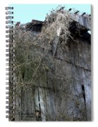 Barn From Below Spiral Notebook