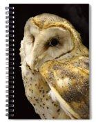 Barn Owl In A Dark Tree Spiral Notebook