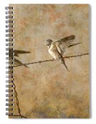 Barn Swallows On Barbed Wire Fence Spiral Notebook