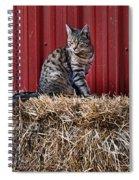 Barnyard Cat Spiral Notebook