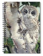Barred Owl II Spiral Notebook