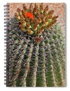 Barrell Cactus II Spiral Notebook