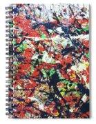Basin Street Bluescape Spiral Notebook
