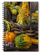 Basket Full Of Gourds Spiral Notebook