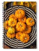 Basket Full Of Small Pumpkins Spiral Notebook