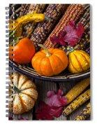 Basketful Of Autumn Spiral Notebook