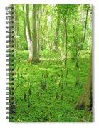Baton Rouge Blueonnet Swamp  La Spiral Notebook