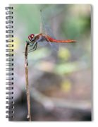 Battling Against The Elements Of Nature Spiral Notebook