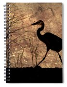 Bayou Walk Spiral Notebook