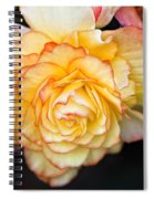 Be Gentle Spiral Notebook
