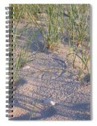 Beach Grass Spiral Notebook