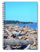 Beach Of Logs Spiral Notebook