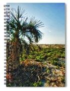 Beach Palm Morning Spiral Notebook