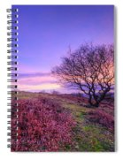 Beacon Hill Sunrise 1.0 Spiral Notebook