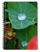 Beads Of Life Spiral Notebook