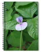 Bean Bloom Spiral Notebook