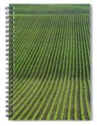 Bean Field, Holland, Manitoba Spiral Notebook