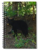 Bear Cub Spiral Notebook