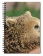 Bear Profile Spiral Notebook