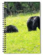 Bears In A Peaceful Meadow1 Spiral Notebook