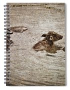 Beast Of Burden Spiral Notebook