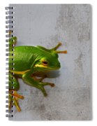 Beautiful American Green Tree Frog On Grunge Background  Spiral Notebook