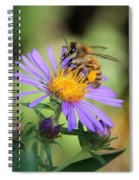 Beautiful Bee Spiral Notebook