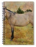 Beautiful Buckskin Spiral Notebook
