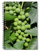 Beautiful Grapes Spiral Notebook