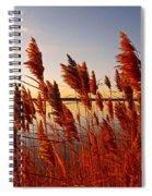 Beautiful Morning ... Spiral Notebook