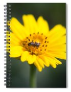 Beautiful Small World Spiral Notebook