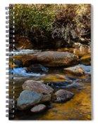 Beautiful Stream Spiral Notebook