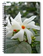 Beautiful White Flower With Orange Center Spiral Notebook