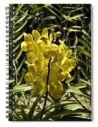 Beautiful Yellow Flowers Inside The National Orchid Garden In Si Spiral Notebook
