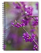 Beauty Berry Explosion Spiral Notebook