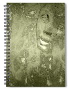 Beauty Cast In Stone Spiral Notebook