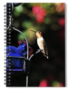 Beauty Defined Spiral Notebook