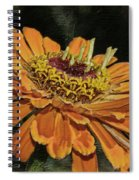 Beauty In Orange Petals Spiral Notebook